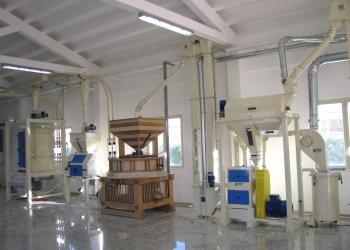 Antenore crushing mill